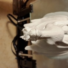 This print has been uploaded by : Denis : 0.2 Layer height, primed and painted with aerosol