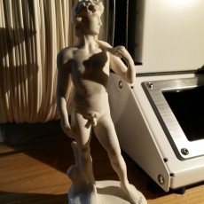 This print has been uploaded by : Frank : Malyan M200 BDP Green-TEC by Extrudr 0.2 mm layer height 40 mm/s