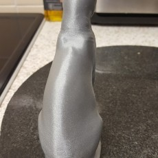 This print has been uploaded by Dale Robins, Printrbot Simple Metal - Fillamentium Rapunzel Silver.