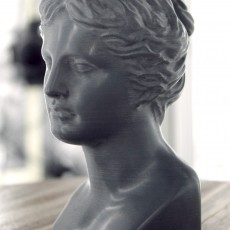 This print has been uploaded by : Scan The World : Head of Venus printed in TreeD Black Stone filament.