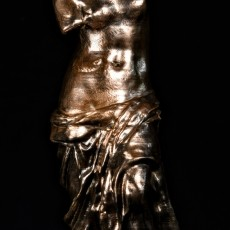 This print has been uploaded by : The Virtual Foundry : Venus deMilo in Filamet™ Copper
