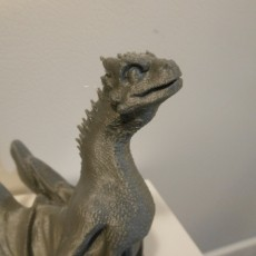This print has been uploaded by : Jareth Bustamante : Printed on Wanhoa Duplicator 3 plus at 200 microns.