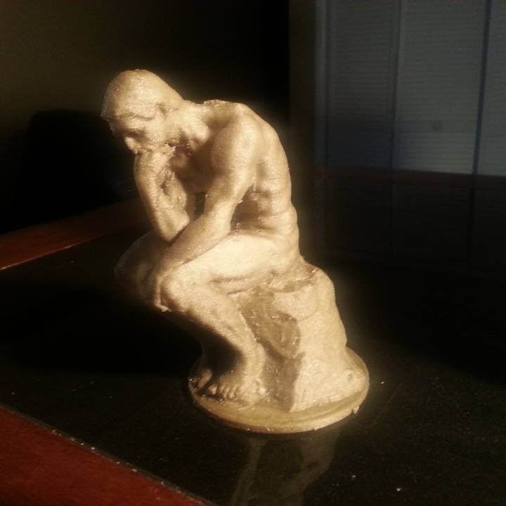 Picture of print of The Thinker at the Musée Rodin, France This print has been uploaded by Junior General