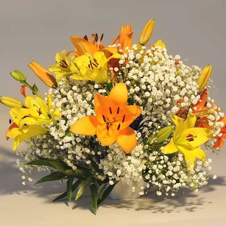 This print has been uploaded by Thomas Palm, Lily La Mix + Gypsophila Paniculata in the Palmiga Globe Bouquet Vase