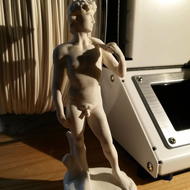 Picture of print of Michelangelo's David in the Accademia di Belle Arti of Florence, Italy This print has been uploaded by Frank