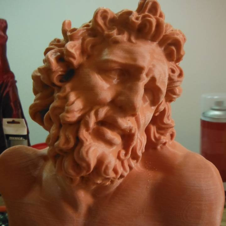 Picture of print of Head of Laocoon at The Réunion des Musées Nationaux, Paris This print has been uploaded by Guido Maurizio