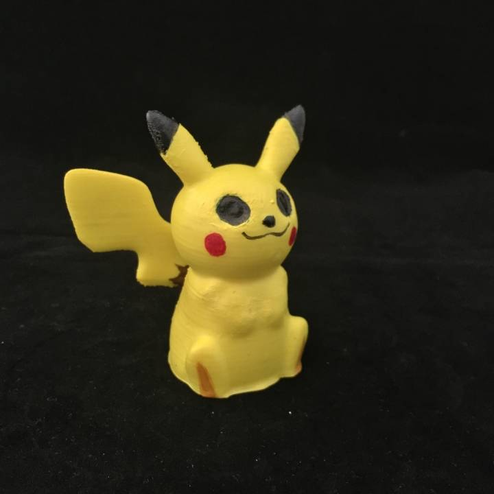 Picture of print of Pikachu Go This print has been uploaded by John Fitzpatrick