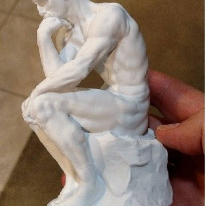 Picture of print of The Thinker at the Musée Rodin, France This print has been uploaded by Jeff Tucker
