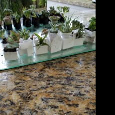 Picture of print of Micro Planter Chess Set This print has been uploaded by Trey Stacy