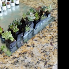 Picture of print of Micro Planter Chess Set