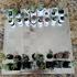 Micro Planter Chess Set print image