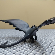 Picture of print of Night Fury Dragon