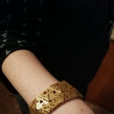 Picture of print of Kinematics Bracelet