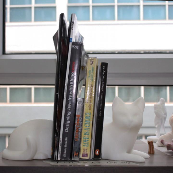 Kitty Cat On Books