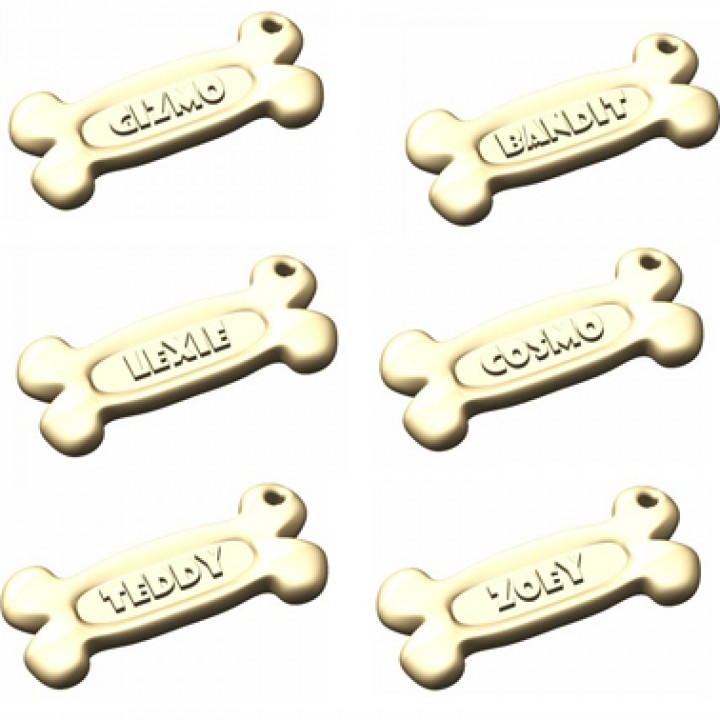 Personalised Pet Bone Keychain