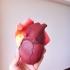 Anatomical Heart print image