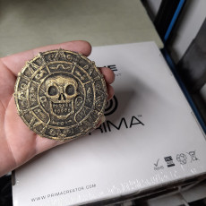 Picture of print of Pirate medallion