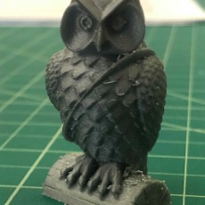 Picture of print of Mail Owl