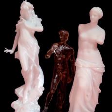 Picture of print of Venus de Milo at The Louvre, Paris