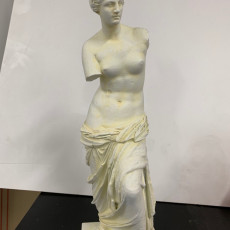 Picture of print of Venus de Milo at The Louvre, Paris