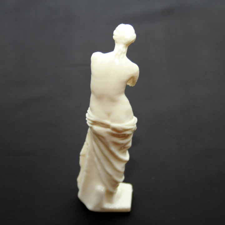Picture of print of Venus de Milo at The Louvre, Paris This print has been uploaded by Ivan B