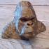 Gorilla Bust print image