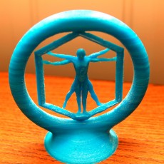 Picture of print of Spinning Vitruvian man