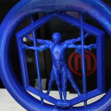 Spinning Vitruvian man