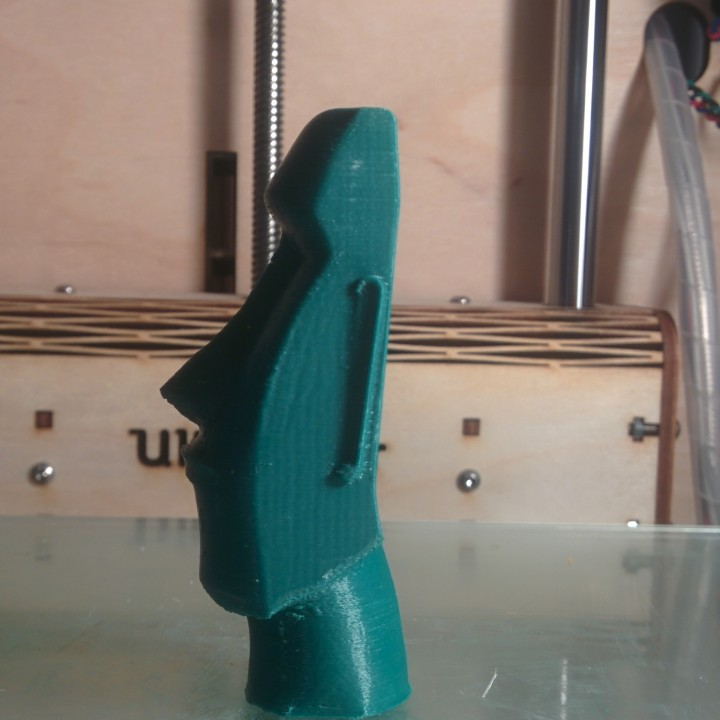 Picture of print of Moai Head on Easter Island This print has been uploaded by Remy Schuitemaker