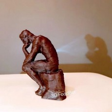 Picture of print of The Thinker at the Musée Rodin, France This print has been uploaded by FoodBot3D