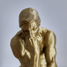 Picture of print of The Thinker at the Musée Rodin, France This print has been uploaded by Jeroen Hustings