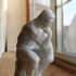 The Thinker at the Musée Rodin, France print image