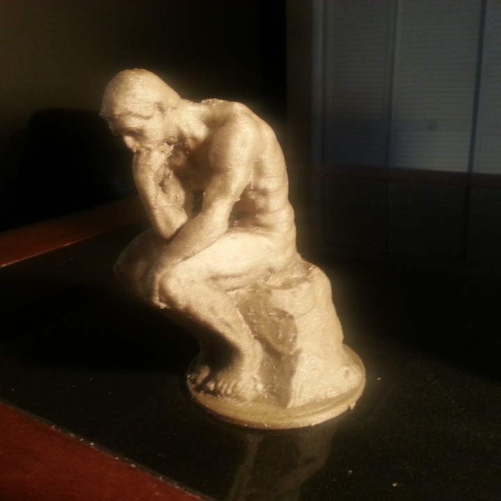 Picture of print of The Thinker at the Musée Rodin, France Questa stampa è stata caricata da Junior General