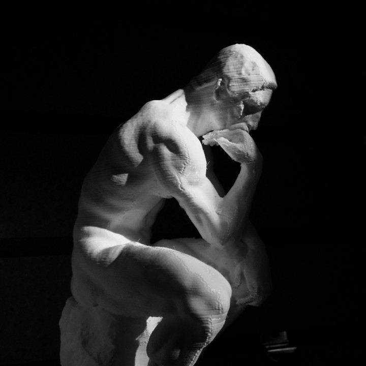 Picture of print of The Thinker at the Musée Rodin, France Questa stampa è stata caricata da 3D Central