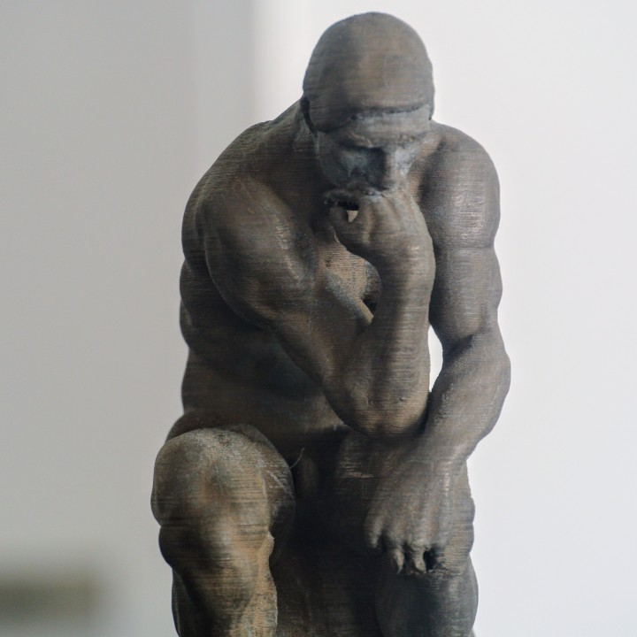 Picture of print of The Thinker at the Musée Rodin, France Questa stampa è stata caricata da makereal