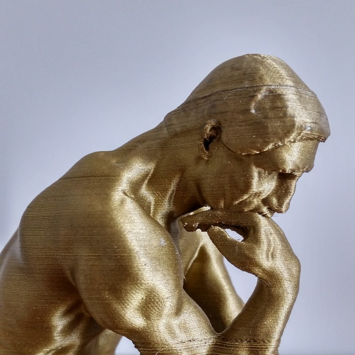 Picture of print of The Thinker at the Musée Rodin, France Questa stampa è stata caricata da Jeroen Hustings