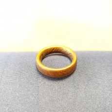 Picture of print of The One Ring