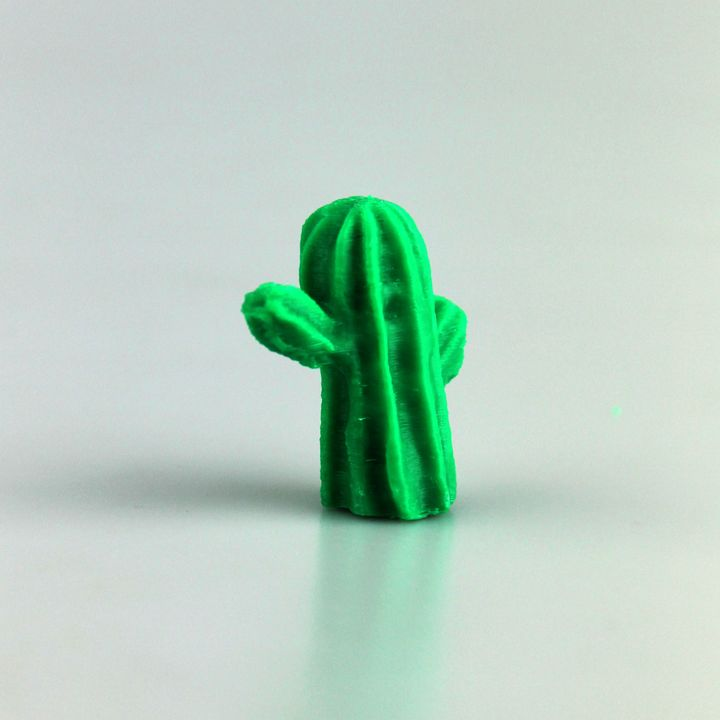 Scanned Cactus