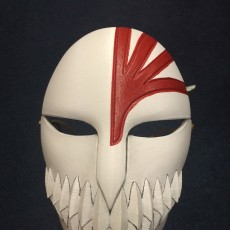 Picture of print of Bleach Mask (Full Size)
