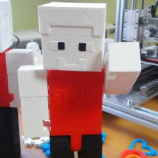 Picture of print of Articulated Steve from Minecraft Questa stampa è stata caricata da Robert Przepiórka