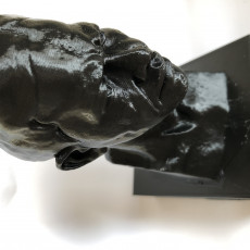 Picture of print of Nelson Mandela Bust at the Royal Festival Hall, London