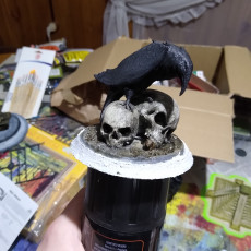 Picture of print of Raven Skull