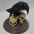 Raven Skull print image