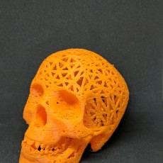 Picture of print of Halloween skull lamps