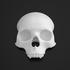 LED Skull Clip image