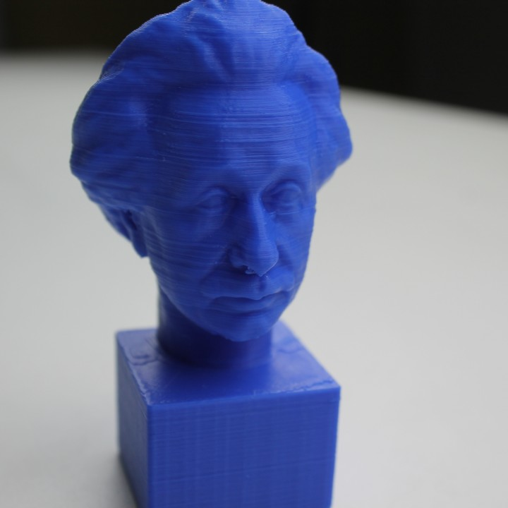 Picture of print of Albert Einstein at The Collection, Lincoln, UK This print has been uploaded by MyMiniFactory