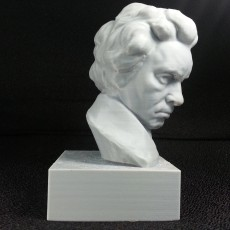Picture of print of Beethoven at The Collection, Lincoln, UK Dieser Druck wurde hochgeladen von Peter Song