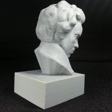 Picture of print of Beethoven at The Collection, Lincoln, UK