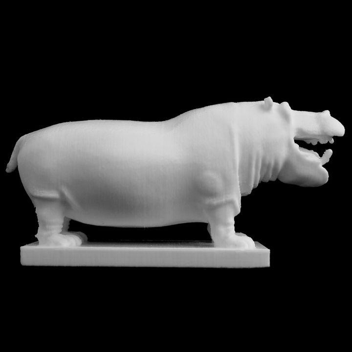 Hippopotamus at the Natural History Museum, London