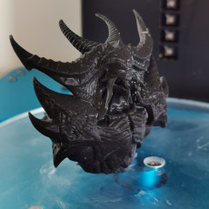 Picture of print of Diablo